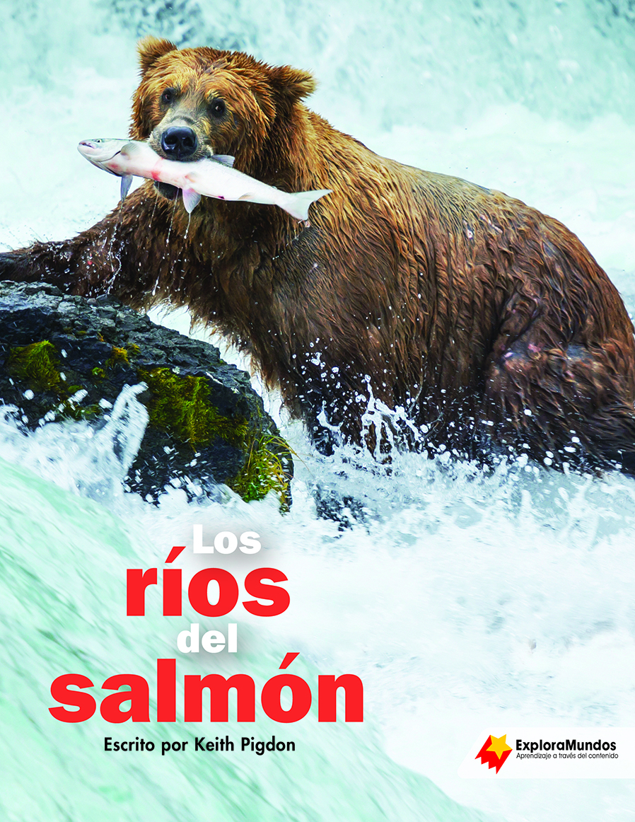 The Salmon Stream