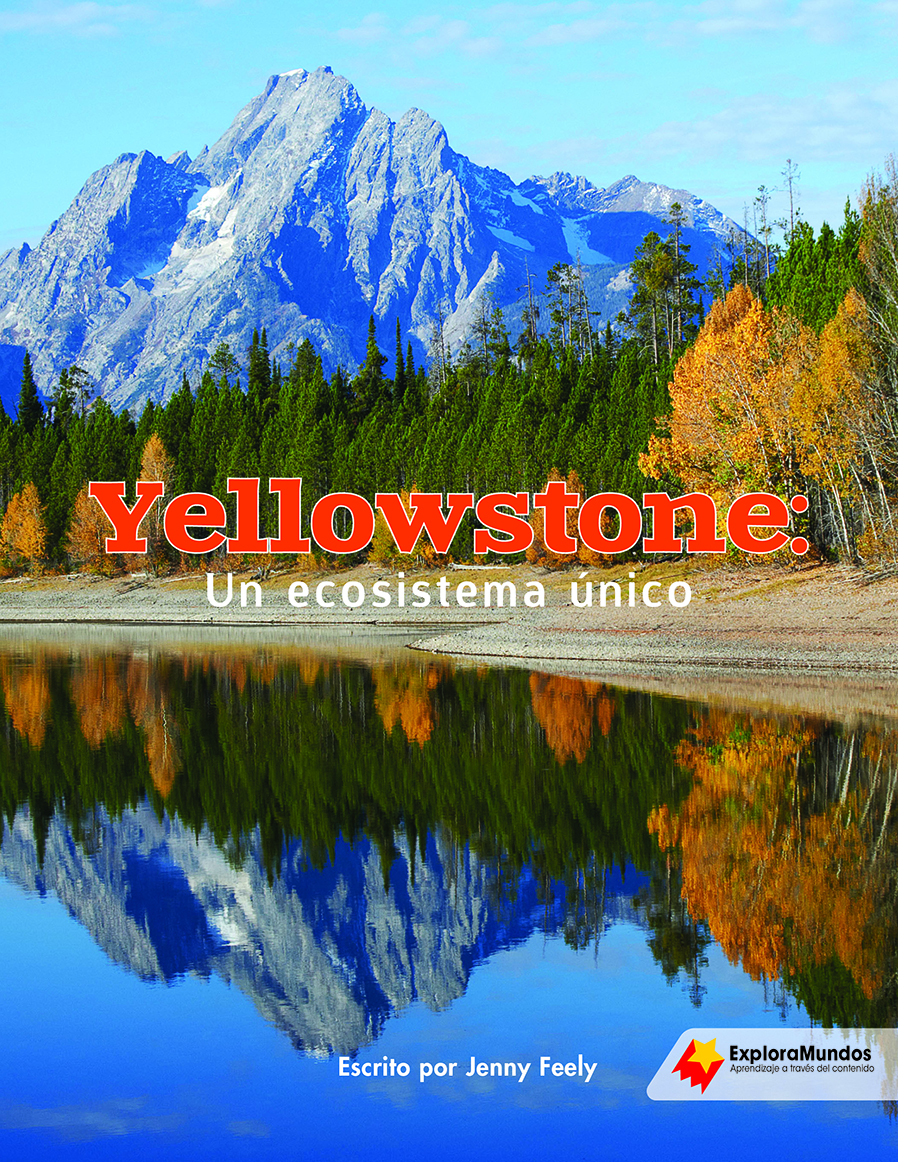 Yellowstone: A Unique Ecosystem